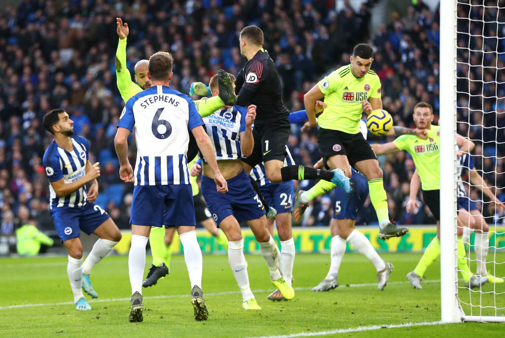 Brighton fan view: How two Seagulls fans see things ahead ...